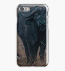 Water Buffalo and Friend iPhone Case/Skin