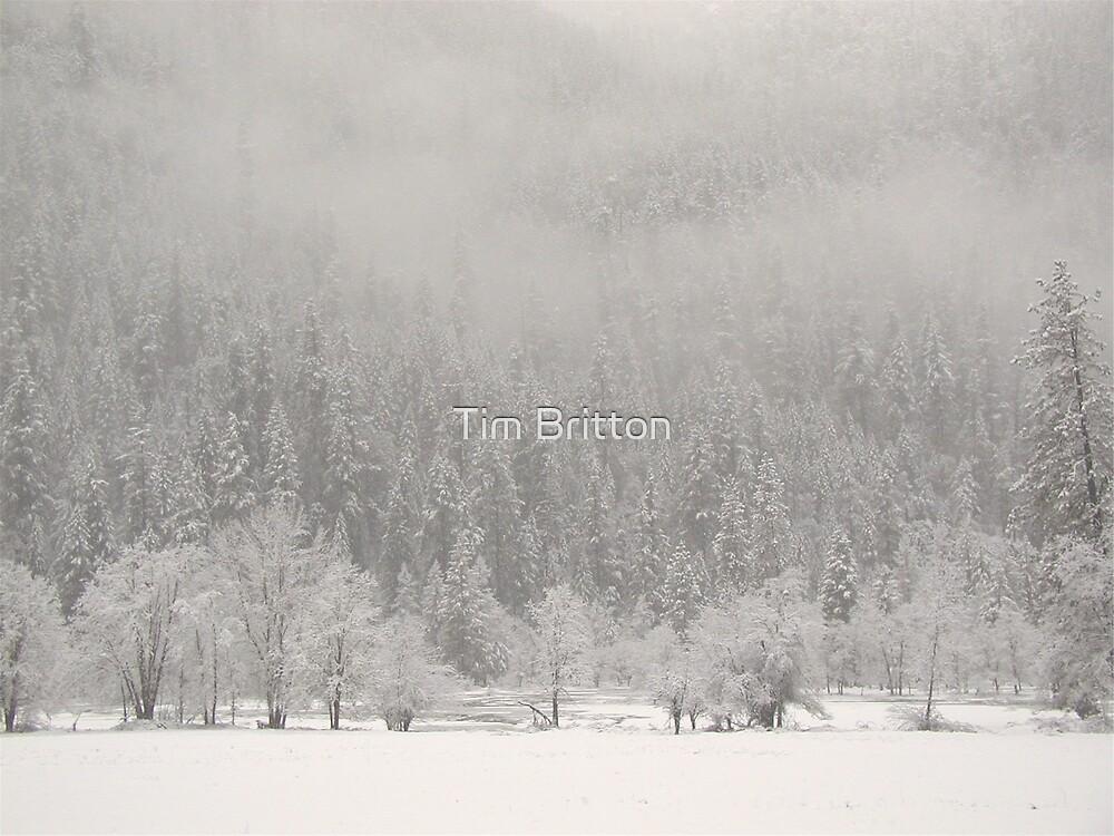 Snow Field by TimsWorld