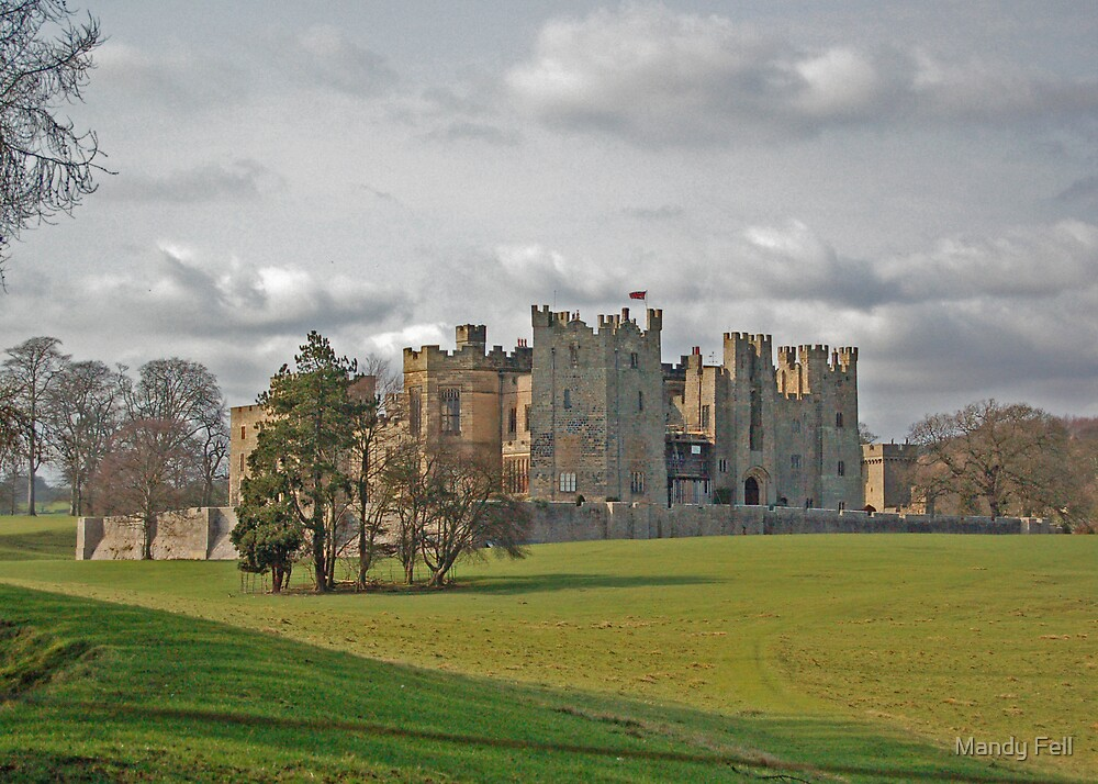 Raby Castle by Mandy Fell