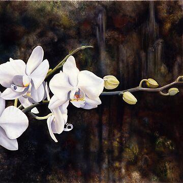 Orchids by matteopaints