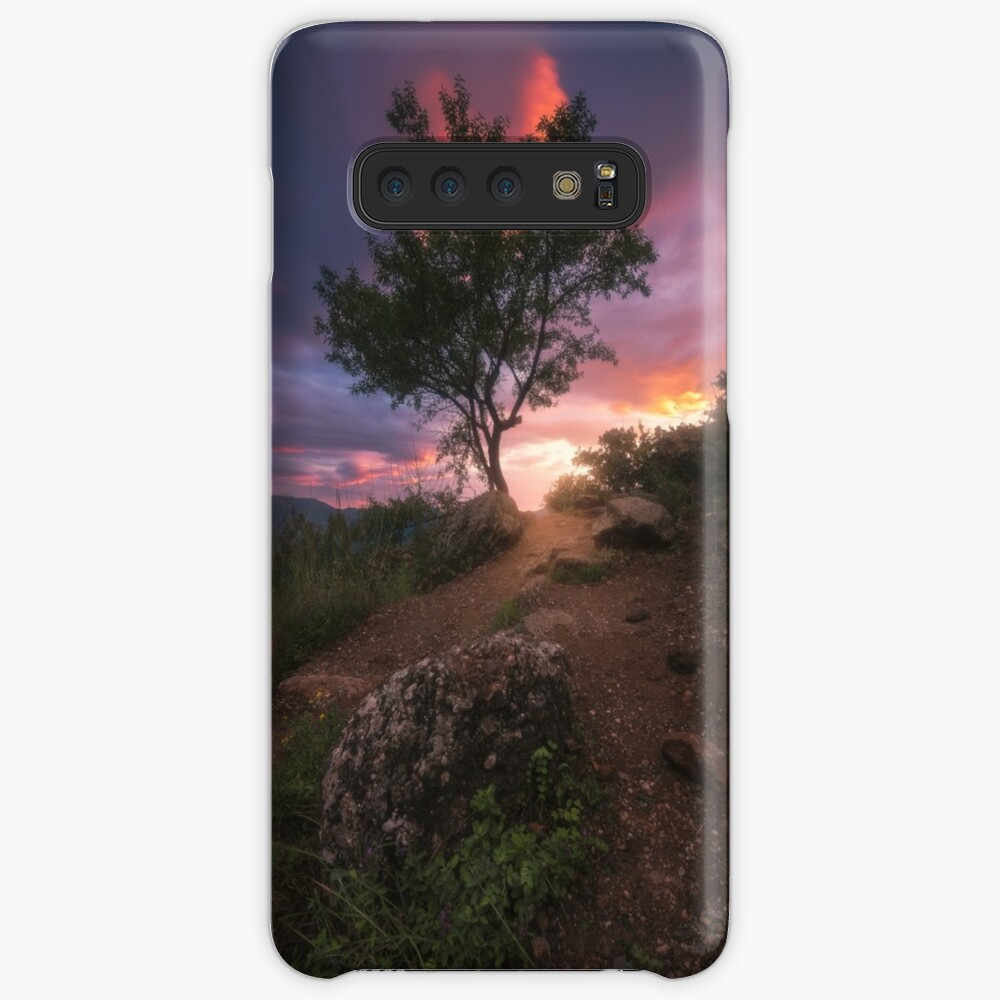 Evening in the Valley of Ghosts Case & Skin for Samsung Galaxy