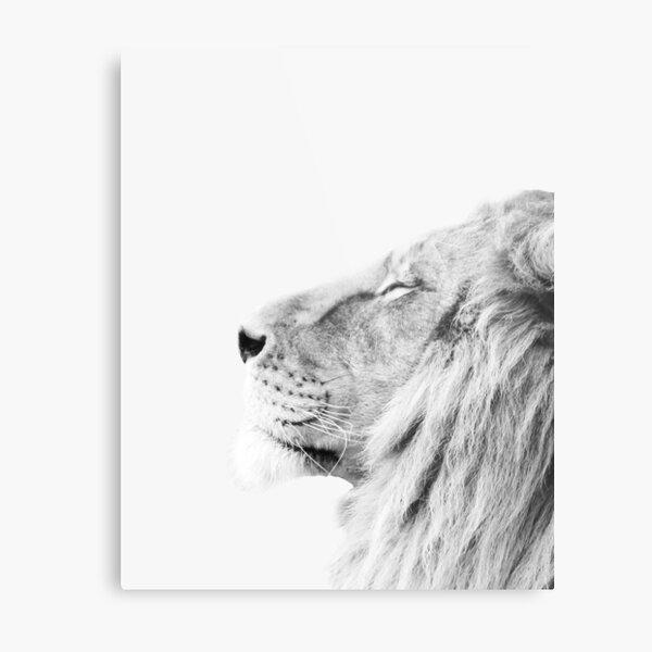 Minimal lion print Metal Print