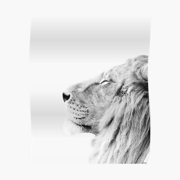 Minimal lion print Poster