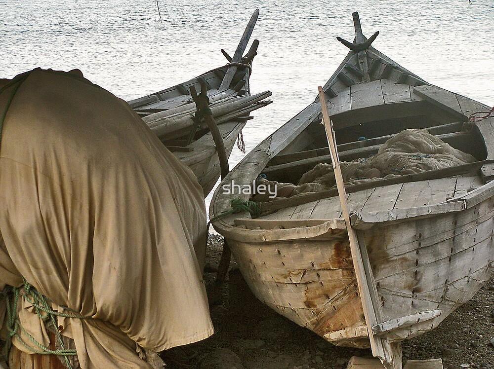 Omani Fishing Boat 2 by shaley