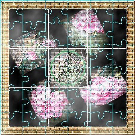 Rose Pose Puzzle by paulwhiteuvme