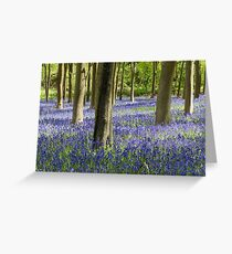 English Bluebells Greeting Card