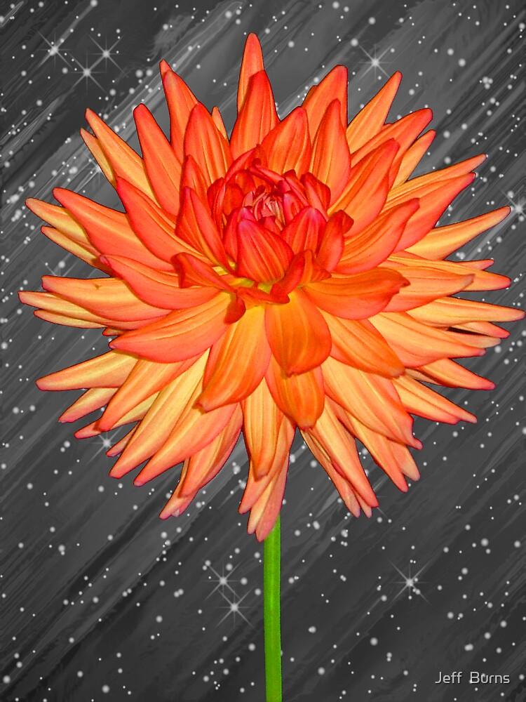 Fabulous Flower by Jeff  Burns