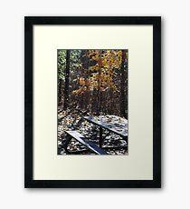 Picnic Table I Framed Print