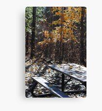Picnic Table I Canvas Print