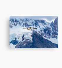 Austral Patagonian Bird Flying Canvas Print