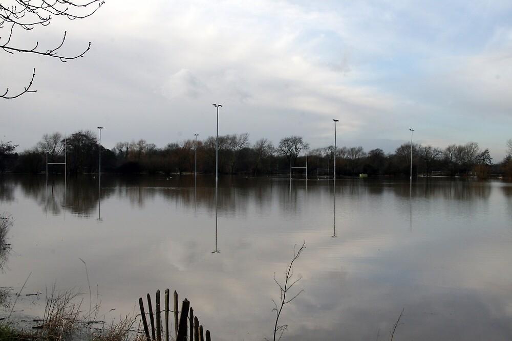 Tonbridge Rugby Field by Emma  Lovell