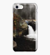 Dual Falls  iPhone Case/Skin