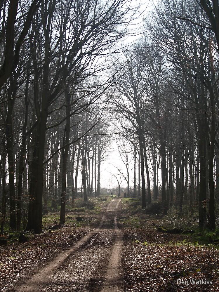 Oakfirth Woods by Dan Watkiss