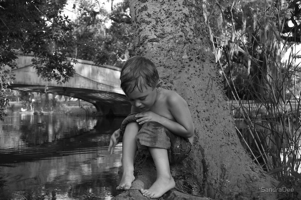 waterboy by SandraDee