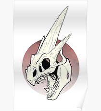 Pokemon - Mega Charizard Y Skull Poster