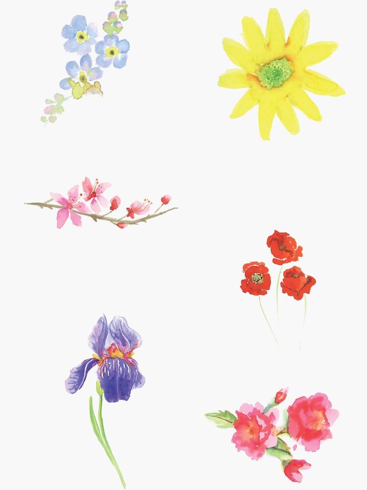 Pack de colección floral de shopbollocks
