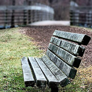 Take a Seat... by shellyb