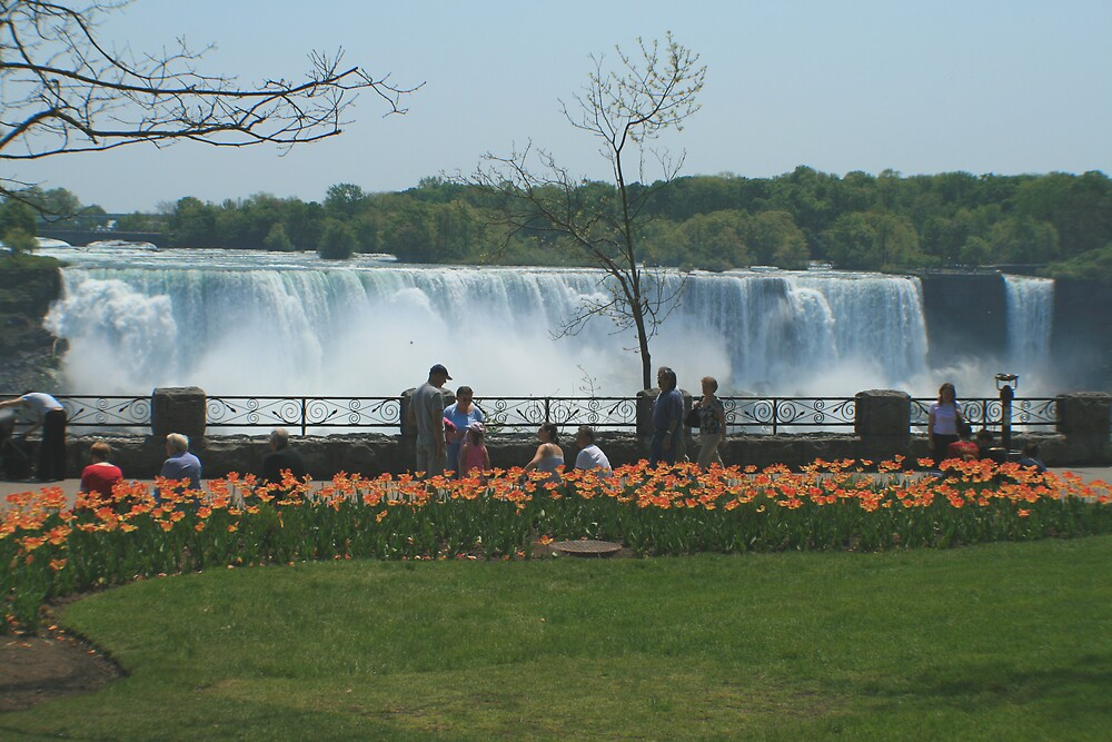 Looking at American falls from Canada by jmasbury