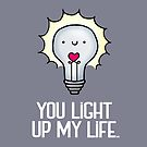 You Light Up My Life by Stacey Roman