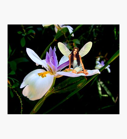 Fairy Daydreamer Photographic Print