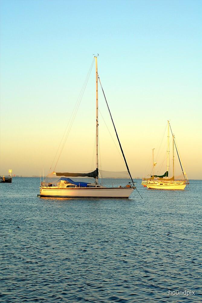 Sail Boat by houndpix