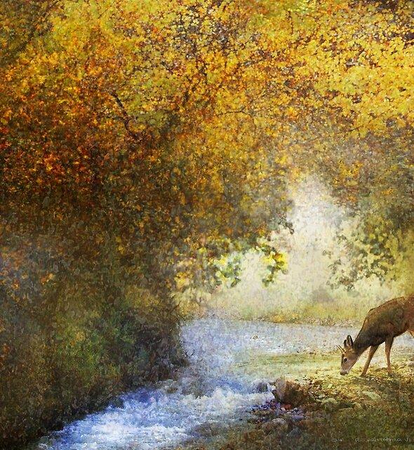 deer by woodland brook by R Christopher  Vest