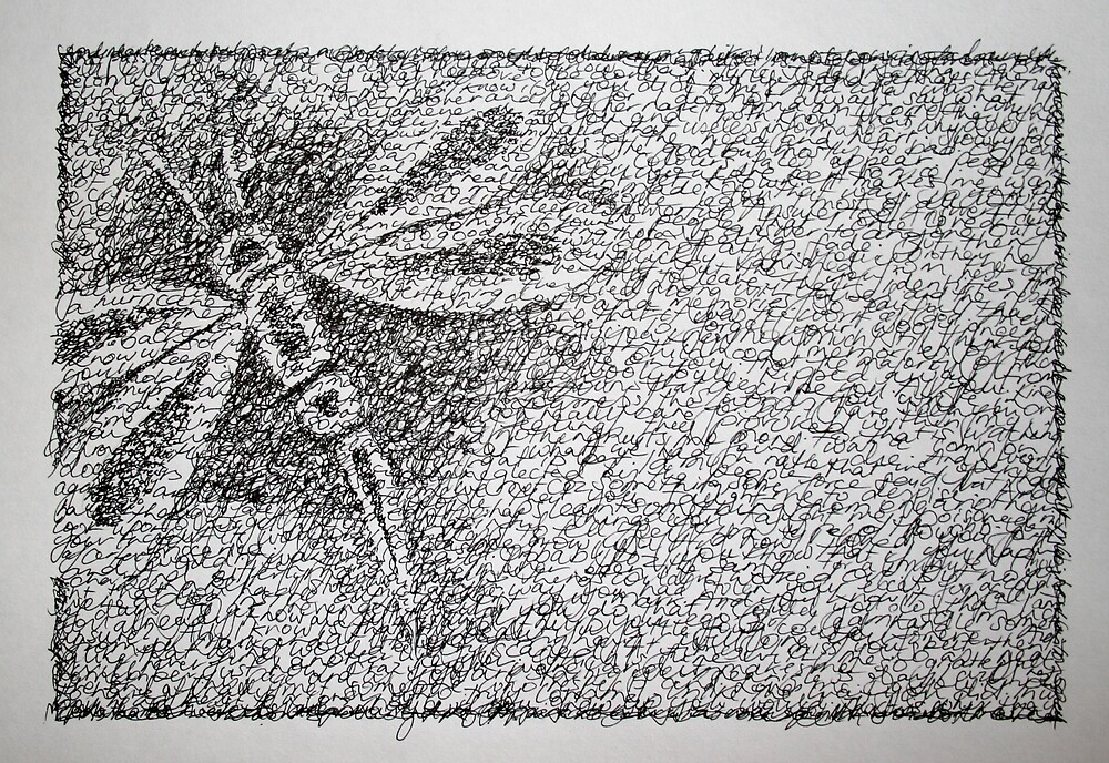 Dragonfly by Katie Young