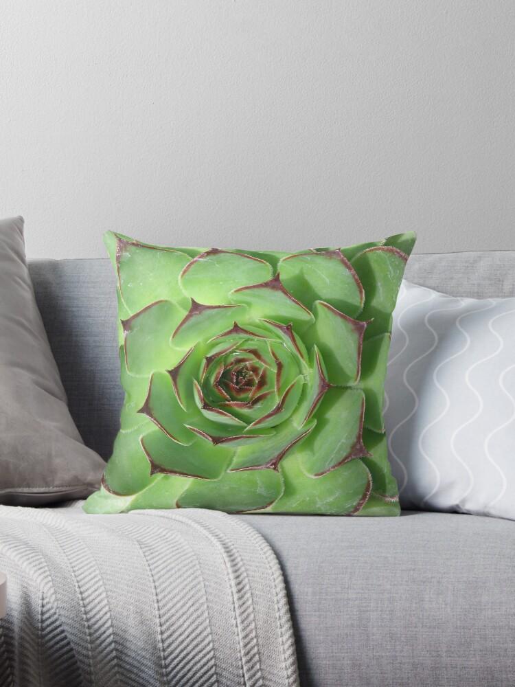 Cool Plant Print Cactus Print Succulent Scandinavian Print Trendy Print Styled Pillow Modern Art Wall Art Print Minimalistic Modern Throw Dailytribune Chair Design For Home Dailytribuneorg
