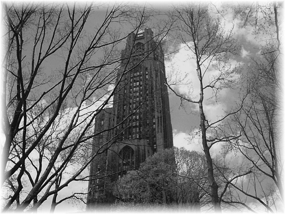 Cathedral of Learning by Sharon Klosowsi