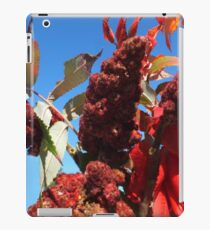 Spicy Sumac iPad Case/Skin