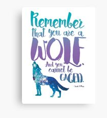 Remember that you are a wolf. And you cannot be caged. ― Sarah J. Maas, A Court of Wings and Ruin  Canvas Print