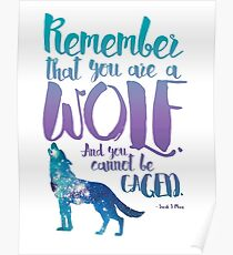 Remember that you are a wolf. And you cannot be caged. ― Sarah J. Maas, A Court of Wings and Ruin  Poster