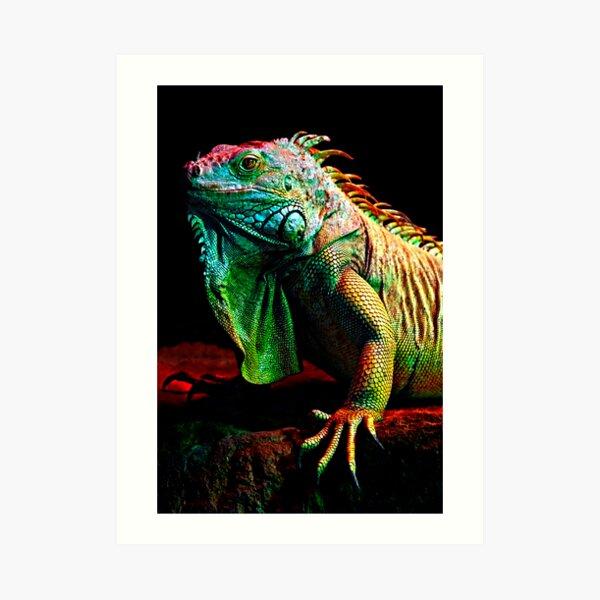 Iguana From The Deep Art Print