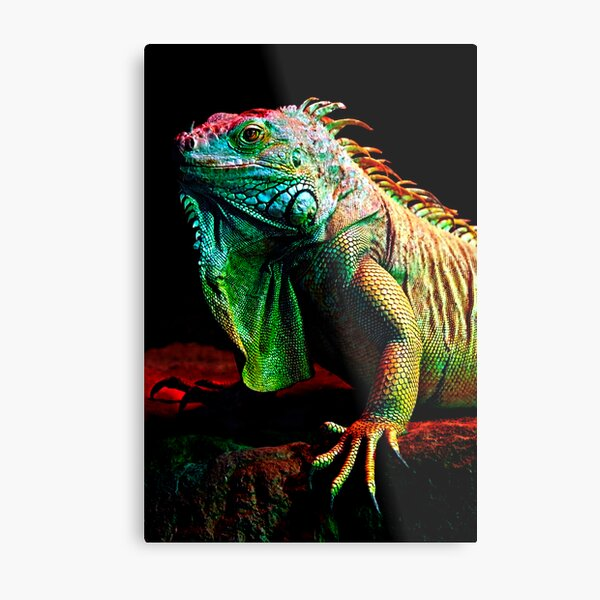 Iguana From The Deep Metal Print