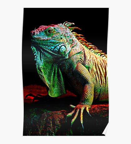 Iguana From The Deep Poster