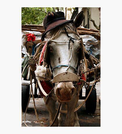 Montevideo, Uruguay 0843 Photographic Print