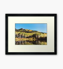 Willow Lake Framed Print