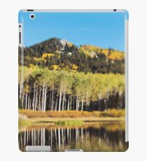 Willow Lake iPad Case/Skin