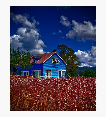 Beyond Blue Photographic Print