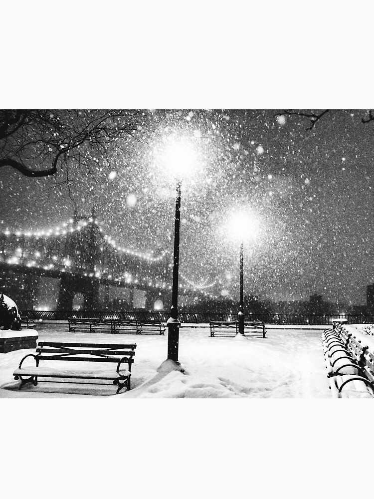 New York City Snow by vgucwaphoto