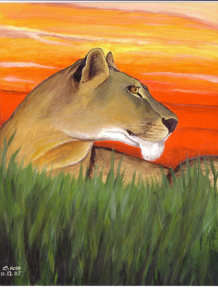 Lioness at sunset by Charlotte Rose
