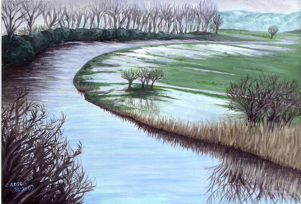 Marais de la Douve by Charlotte Rose