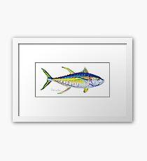 Yellowfin Tuna No.4 Framed Print
