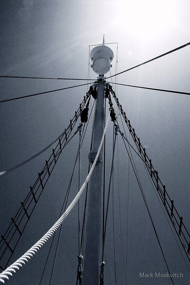 The Crows Nest by Mark Moskvitch