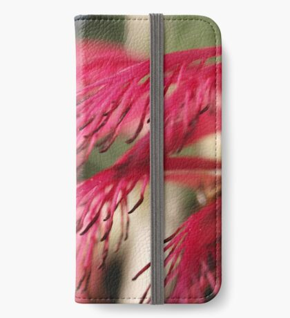 Calothamnus in Serpentine iPhone Wallet