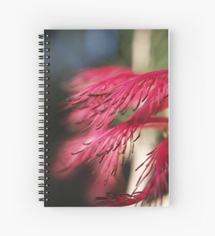 Calothamnus in Serpentine Spiral Notebook