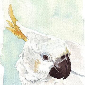 Danny, the Cockatoo 2 by MareeClarkson