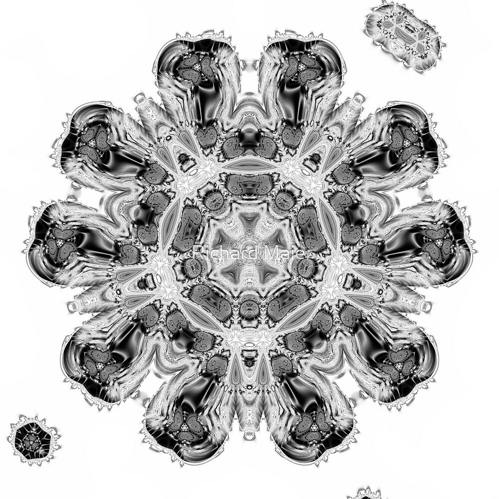 Amoeba 5 by Richard Maier