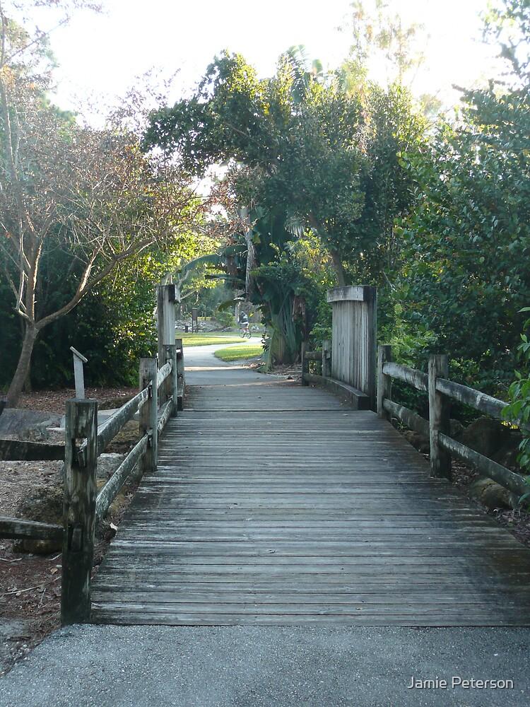 Wetland's Bridge by Jamie Peterson