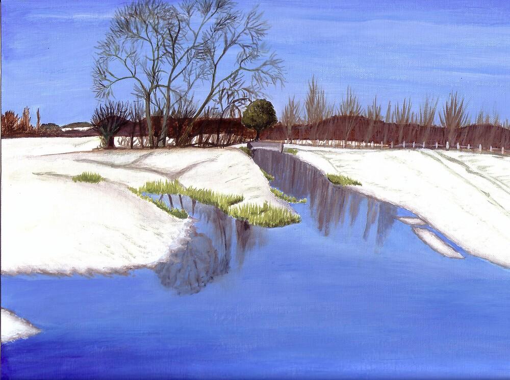 Harnham Watermeadows - Winter by Charlotte Rose